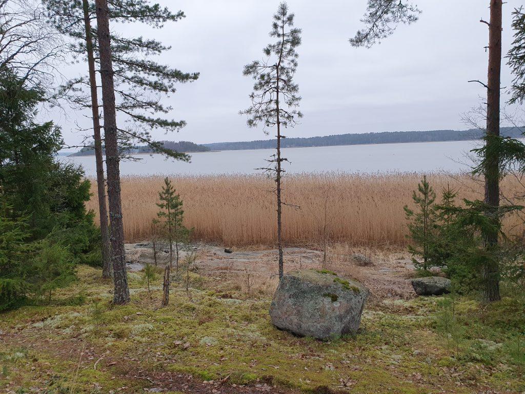 rannan ruoppaus ennen Kaivinkoneurakointi Lönnqvist oy